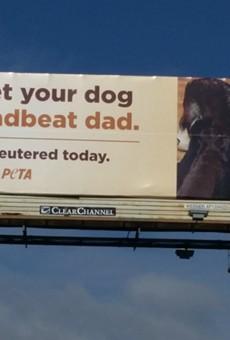 PETA placed this billboard on Loop 410 near Starcrest.