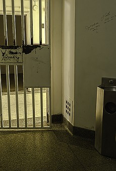 A special state committee will review jail safety standards next month.