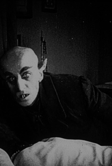 Reels at the Ruin returns with iconic vampire film Nosferatu, enhanced with live music