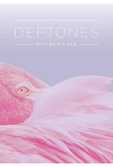 "The single cover for ""Doomed User."""