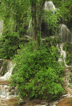 Springs, Falls and Swimming Holes for the Beach-averse