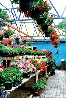 Best Plant Nursery