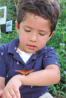 Boy meets a butterfly at Santa Ana National Wildlife Refuge.