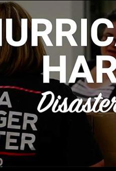 San Antonio Food Bank in Urgent Need of Donations, Volunteers
