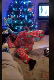 This San Antonio Dad's Christmas Hoverboard Fail Went Viral