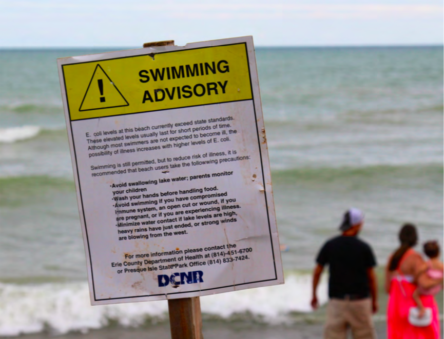 Ready to Dive In? Texas Beaches Have So Much Poop It Could