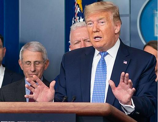 President Donald Trump speaks during a White House coronavirus briefing. - THE WHITE HOUSE
