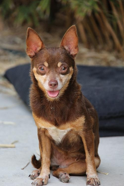 Thelma's just a shy girl who'd love to live a life of luxury with her BFF Louise