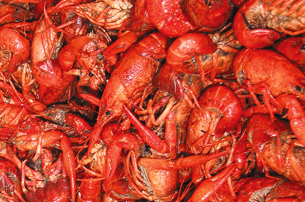 Crawfish season is the best season