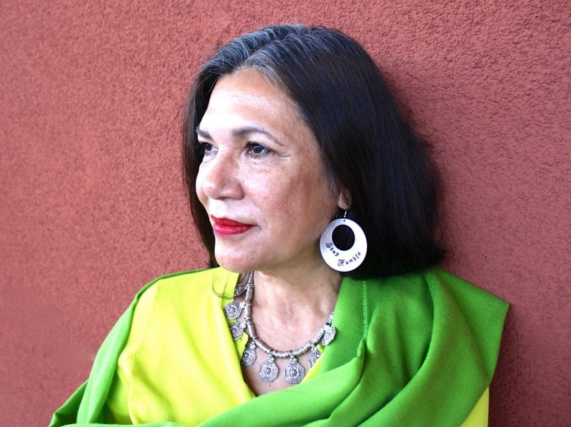 a look into life and writings of ana castillo Endnotes this article benefited from detailed comments by arturo aldama, marouf hasian, and vicki ruiz, all at the university of california, irvine.