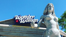 First-Ever Wonder Woman Roller Coaster Opening at Fiesta Texas This Weekend