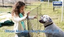 CBHarper Adopt-a-Pet