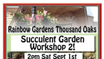 Succulent Garden Workshop 2