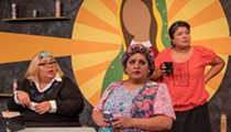 Liz Coronado Castillo's <i>Aye, No!</i> Makes an Audacious Debut at the Cellar Theatre