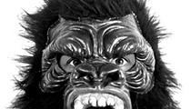 Distinguished Lecture: Guerrilla Girls