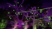 Lions, Tigers and Lights: Zoo Lights Takes Over San Antonio Zoo Through Holiday Season