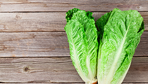 CDC Warns of Another E. coli Outbreak Related to Romaine Lettuce