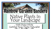 Native Plants In Your Landscape