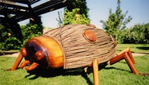 Surround Yourself with 'Big Bugs' Over Labor Day Weekend at the San Antonio Botanical Garden
