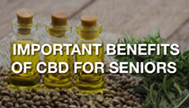 Important Benefits Of CBD For Seniors