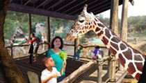 San Antonio Zoo Should Be Able to Sell Beer and Wine Next Year