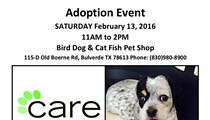CARE Adoption Event