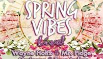 Spring Vibe Music Fest