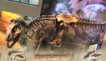 Witte Lecture Investigates the History of Dinosaurs in Texas