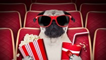 Pups Take Center Stage at Saturday's New York Dog Film Festival