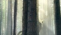 Free Outdoor Movie: Pete's Dragon