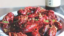 Locating the Best Seafood Spots Across San Antonio