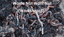 Waste Not Want Not (Workshop 3)