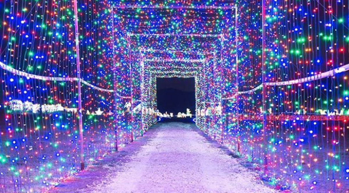 Windcrest Christmas Lights 2020 Radio Station The Best Christmas Light Displays Within Driving Distance of San