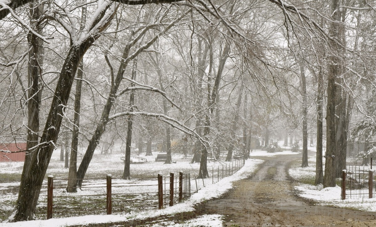 Snow A Possibility For Texas Hill Country Tonight But Not