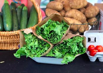 Explore the Year-Round Farmers Markets Part of San Antonio's Charm