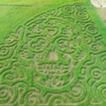 New San Antonio-Area Corn Maze Takes the Form of a Dia de los Muertos Sugar Skull