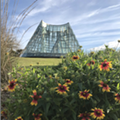 San Antonio Botanical Garden Reduces Admission Price for SNAP and WIC Cardholders