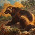 Briscoe Western Art Museum Launches New Exhibition with a Series of Animal-Themed Events