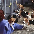 Texas AG Says A&M Doesn't Have To Release Info About Animal Testing