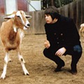 Levitation Festival in Austin Announces Lineup Featuring Brian Wilson Performing 'Pet Sounds'