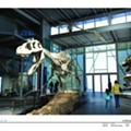 The Witte Names Its First-ever Permanent Dino Gallery
