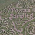 Local Maze Will Benefit Hurricane Harvey Relief, Is Texas AF