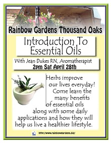 bb7f9406_introduction_to_essential_oils_thousand_oaks.jpg