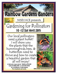 aec1edd3_nisd_gardening_for_pollinators.jpg