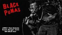 black_pumas.jpg