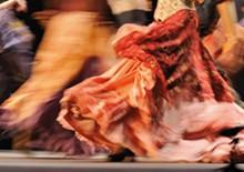 flamenco_in_the_park.jpg