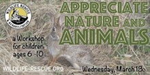 appeciate_nature_.jpg