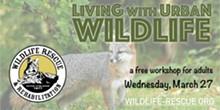 living_urban_wildlife_.jpg