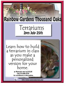05276946_terrariums_thousand_oaks.jpg