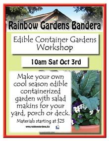 16a39b2b_edible_container_gardens_bandera_1.jpg